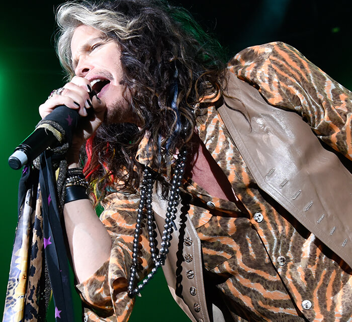 Portrait of Steven Tyler / Kings of Chaos